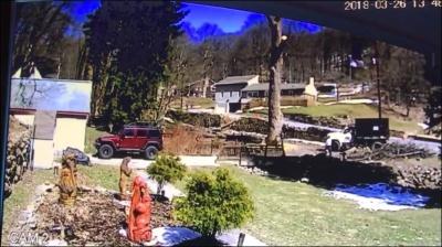Хорошо дерево завалил