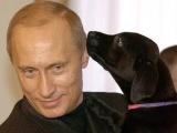 Самые крутые фото Путина по версии американцев (37 фото)