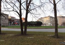 В Нарве хотят исследовать автомобильный и пешеходный трафик в городе
