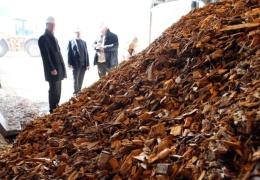 Сжигание древесины на Нарвских электростанциях создает риск роста цен на отопление
