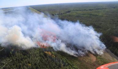 В Ида-Вирумаа пожар охватил 15 гектаров леса