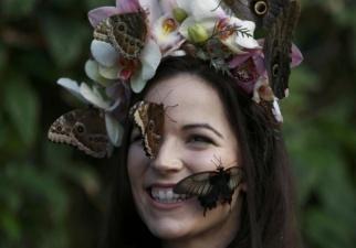 Фотосессия с бабочками