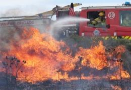 """В Австралии более 100 домов уничтожены """"Рождественскими"""" лесными пожарами"""