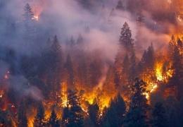 Леса Сибири будут полыхать до середины осени