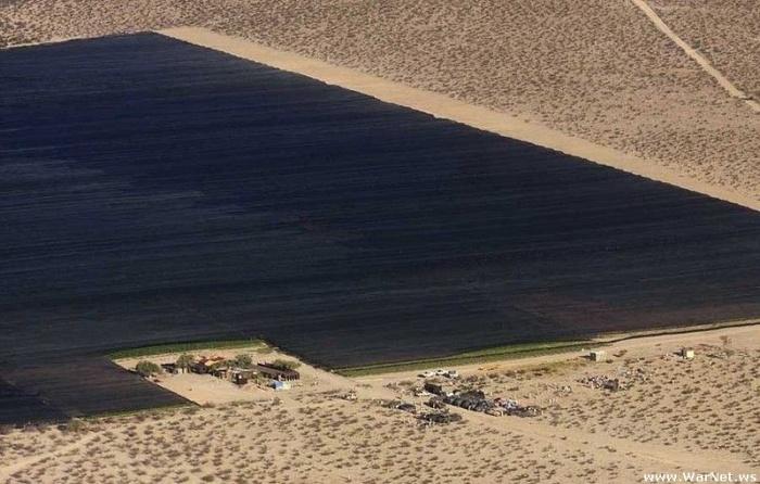 Странный оазис в пустыне