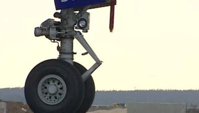 Безбилетник выпал из самолета в небе над Лондоном
