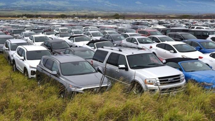 На Гавайях тысячи прокатных автомобилей поставили на одну парковку