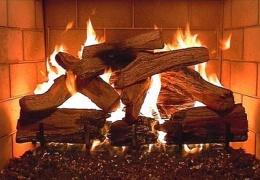 Правительственное разрешение сжигать на Нарвских электростанциях древесину повысит ее стоимость