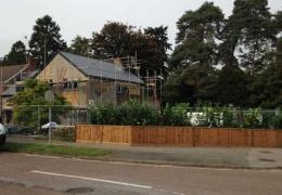 У жителей Великобритании украли живую изгородь