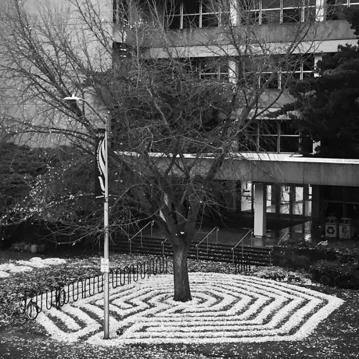 Американка создаёт из опавших осенних листьев разные геометрические узоры