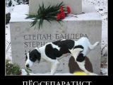 ПЁС - СЕПАРАТИСТ