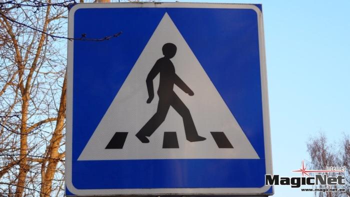 В Нарве автомобиль сбил на пешеходном переходе ребенка и мужчину