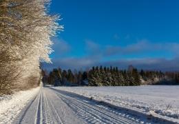 Предстоящая ночь может стать самой холодной в январе
