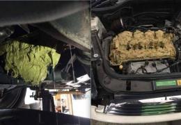 Девушка случайно залила в двигатель «омывайку» вместо масла