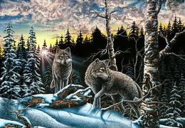 На картинке десять волков