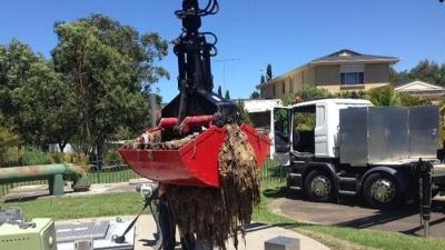 Австралийские коммунальщики борются с влажными салфетками