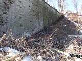 Нарвские бастионы лишились десятков деревьев (Обновлено)