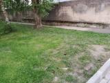 квартирное товарищество в Нарве просит управу очистить город от крыс