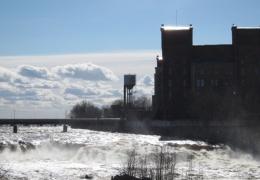 Восстановление популяции лосося в Нарове зависит от договоренности с Россией