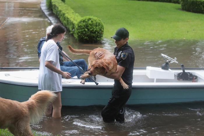 Раз в 500 лет: наводнение в Хьюстоне и ураган Харви