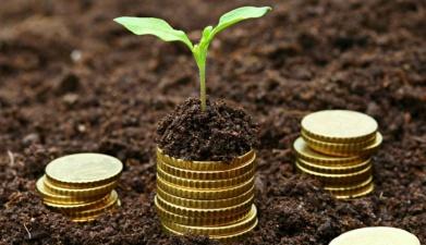 Повышение земельного налога может увеличить стоимость отечественных продуктов питания