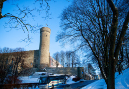 LIVE: День независимости Эстонии начнется с торжественного поднятия флага