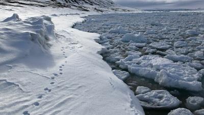 В Арктике открыли новый остров, возникший из-за глобального потепления
