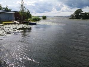 Пограничные катера на Нарвском водохранилище запутываются в водорослях