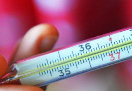 Департамент здоровья прогнозирует рост заболеваемости гриппом в январе