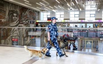 Рыжий - самый милый полицейский в России