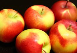 Эстонские производители сока предпочитают местным яблокам концентрат из Европы