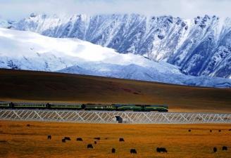 Магистраль Цинхай-Пекин самая высокогорная железная дорога в мире