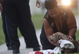 Трогательная история о собаке, спасшей жизнь хозяйке