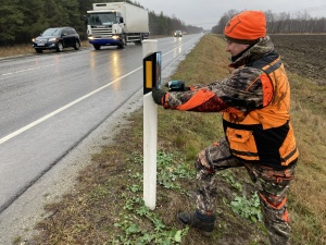 На шоссе Таллинн-Нарва установили отражатели, отпугивающие диких животных