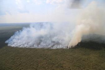В заповеднике в Йыгевамаа горит 10 гектаров болота