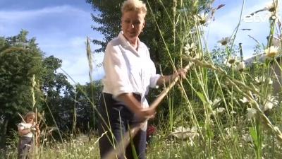 В Нарве прошел мастер-класс по кошению травы ручной косой