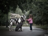 Милые снимки детей и собак