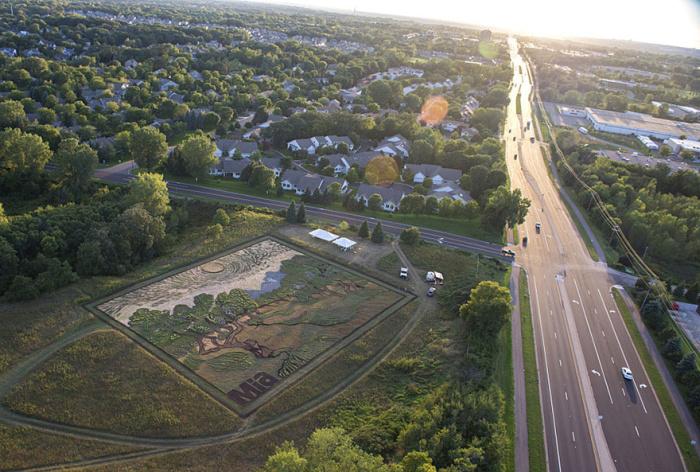 Ландшафтный дизайнер из США превратил поле в репродукцию картины Винсента Ван Гога