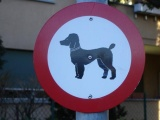 Смешные дорожные знаки и приколы с ними