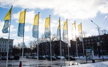 Таможенники просят Нарву разрешить бесплатно парковаться на Петровской площади