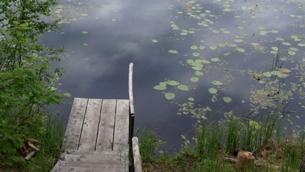 В Нарве в пруду обнаружен труп мужчины