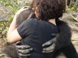 Счастливая обезьяна встречает людей после долгих лет одиночества на острове