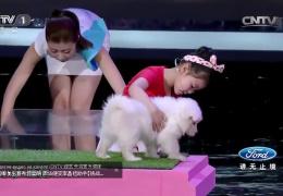 Девочка на китайском шоу талантов гипнотизирует животных