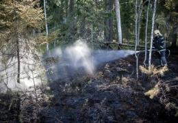 В Эстонии повсеместно запрещено курить и разводить огонь на природе