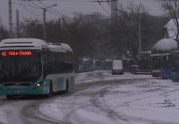 Харьюмаа станет первым уездом с бесплатным общественным транспортом