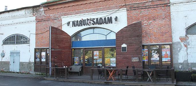 Нарва хочет открыть сообщение с финскими портами