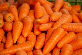 EVIRA: весенняя морковь может вызвать отравление