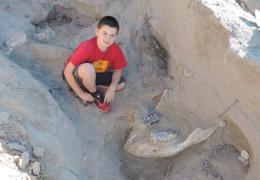 9-летний мальчик случайно нашел череп предка слона возрастом более 1 млн лет