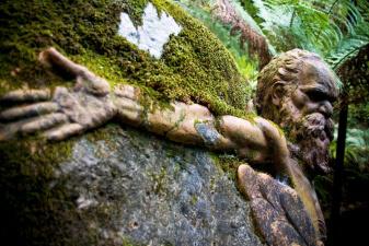 Откуда в Австралии взялись вросшие в камни и деревья скульптуры