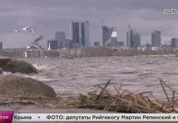 Итоги апрельского шторма: поваленные деревья, поврежденные машины и отключения электричества